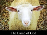 Free PowerPoint Sermon: Lamb of God – Good Friday, Easter, Passover, Halloween :